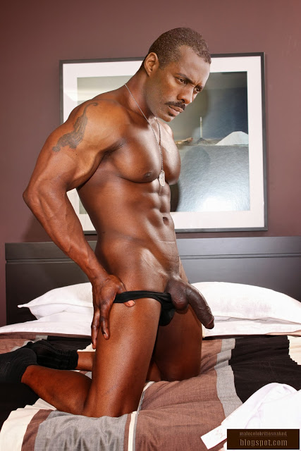 image Gay xxx robbie anthony is the perfect