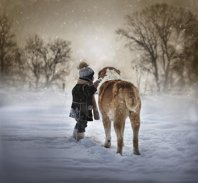 Yaroslav and Friend by Elena Shumilova