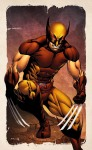 X-Men: Wolverine by Robert Atkins